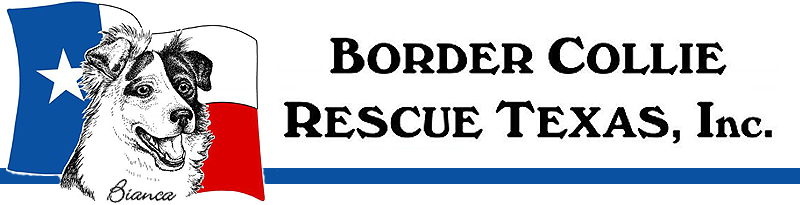 Border Collie Rescue Texas, Inc